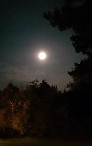 Sonne, Mond und Sterne 19.10.2021 - vom 17.10 auf den 18.10.2021 von 2 Uhr