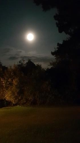 Sonne, Mond und Sterne 19.10.2021 - von meinem Wohnzimmerfenster aus