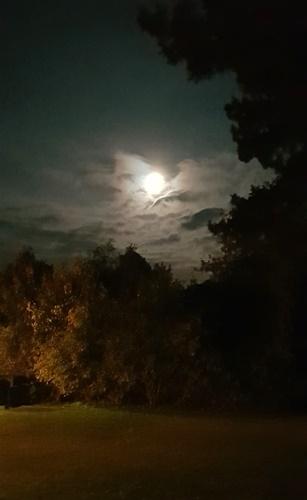 Sonne, Mond und Sterne 19.10.2021 - bis 2 Uhr 30