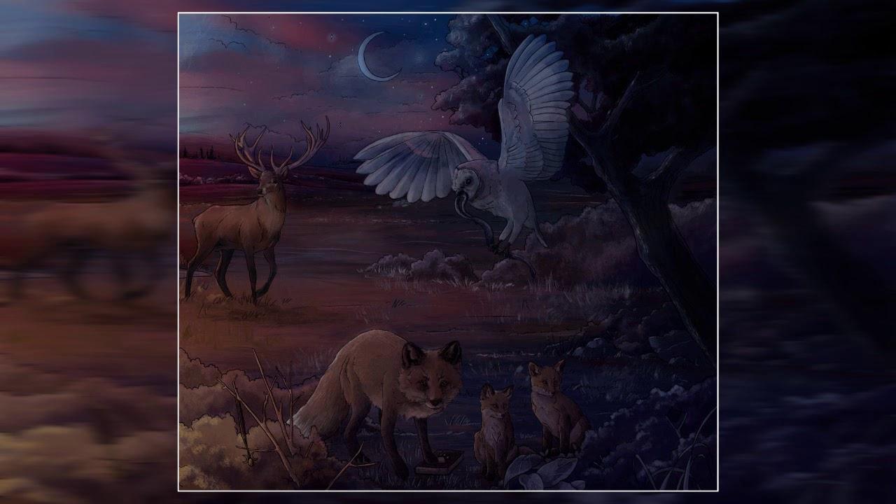 Bear, The Storyteller - Deidades (2020) (Full Album)